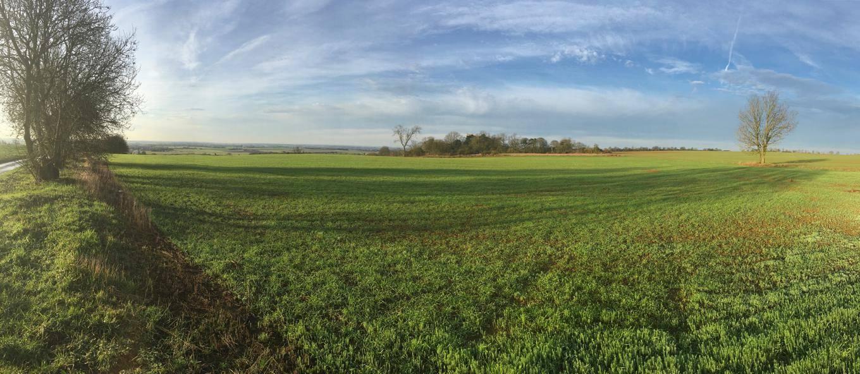 Lincolnshire skies
